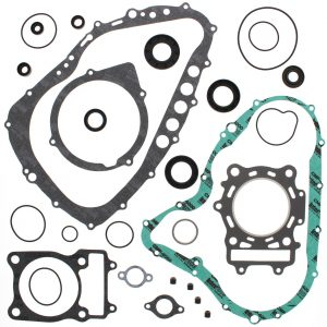 new complete gasket kit w oil seals arctic cat 500 4x4 w mt 500cc 2000 2001 89711 0 - Denparts