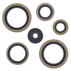 new engine oil seal kit ktm exe 125 125cc 2000 2001 84844 0 - Denparts